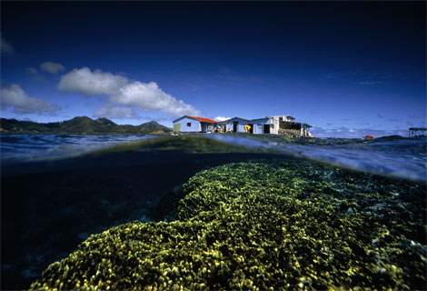 Pearl Station and Reef, French Polynesia, 1996